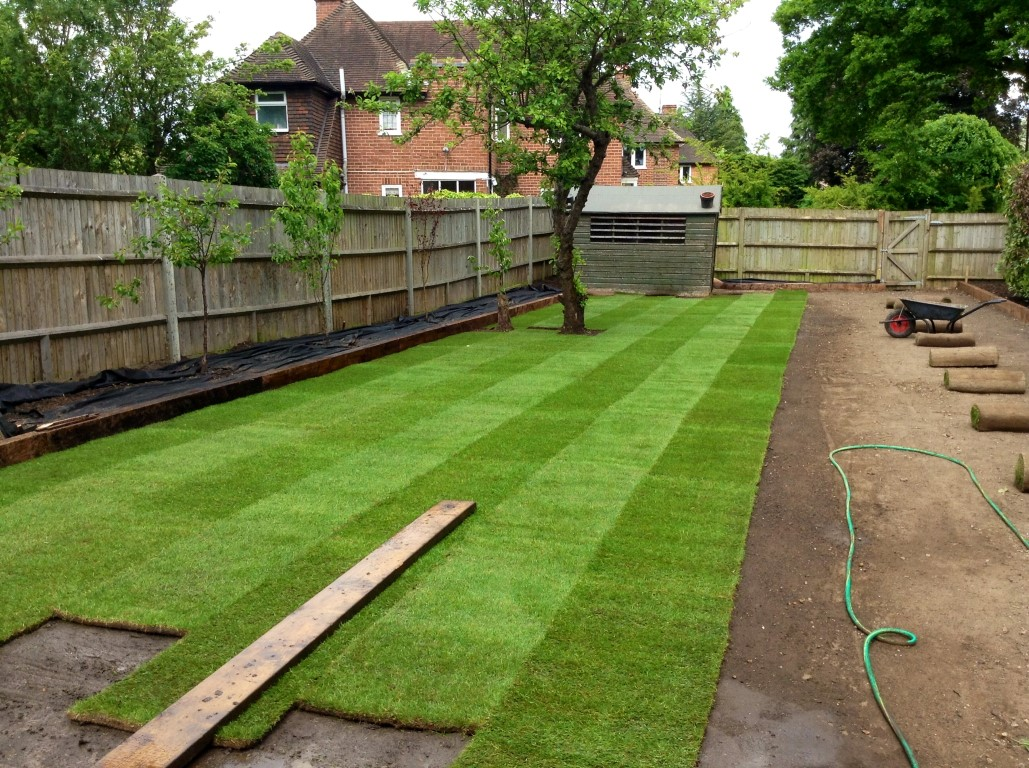 Gallery The Garden Company Turfing Lawn Treatments Pressure